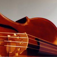 Accademia Musicale di Ancona